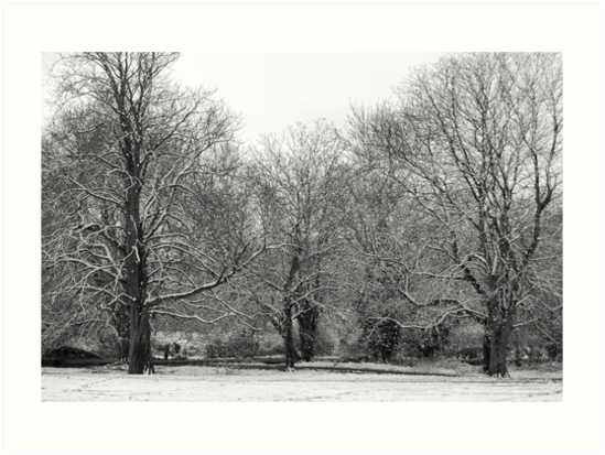 Boxmoor snow by Flashboy