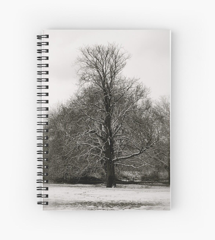 Boxmoor snow  by Flashboy
