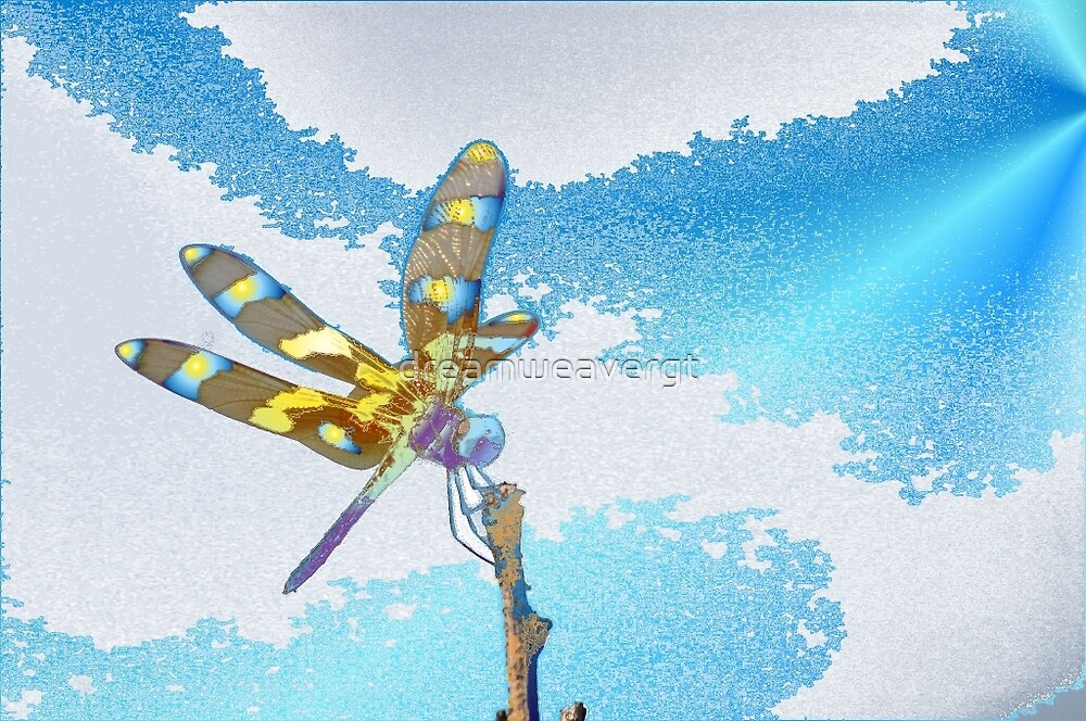 dragonfly by dreamweavergt
