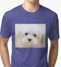 Cute Puppy Tri-blend T-Shirt