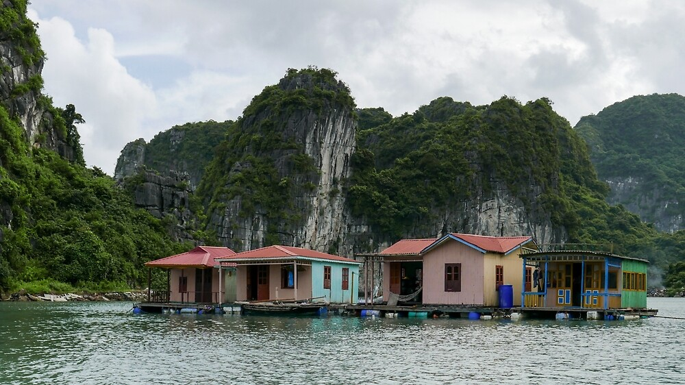 Floating Houses. by Michael Stocks