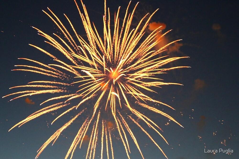 Fireworks by Laura Puglia