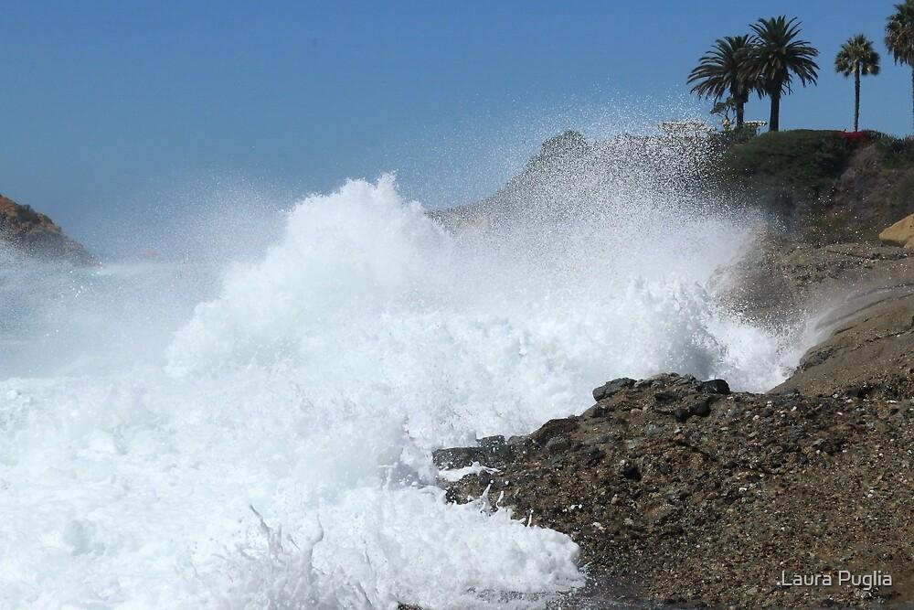 Near Dana Point by Laura Puglia