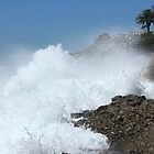 In der Nähe von Dana Point von Laura Puglia