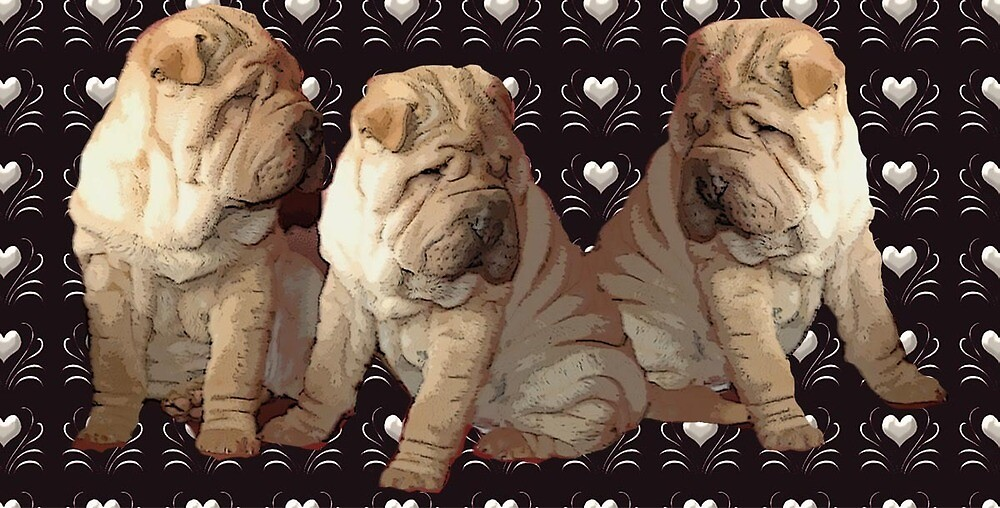 Chinese SharPei for dog lovers by IowaArtist