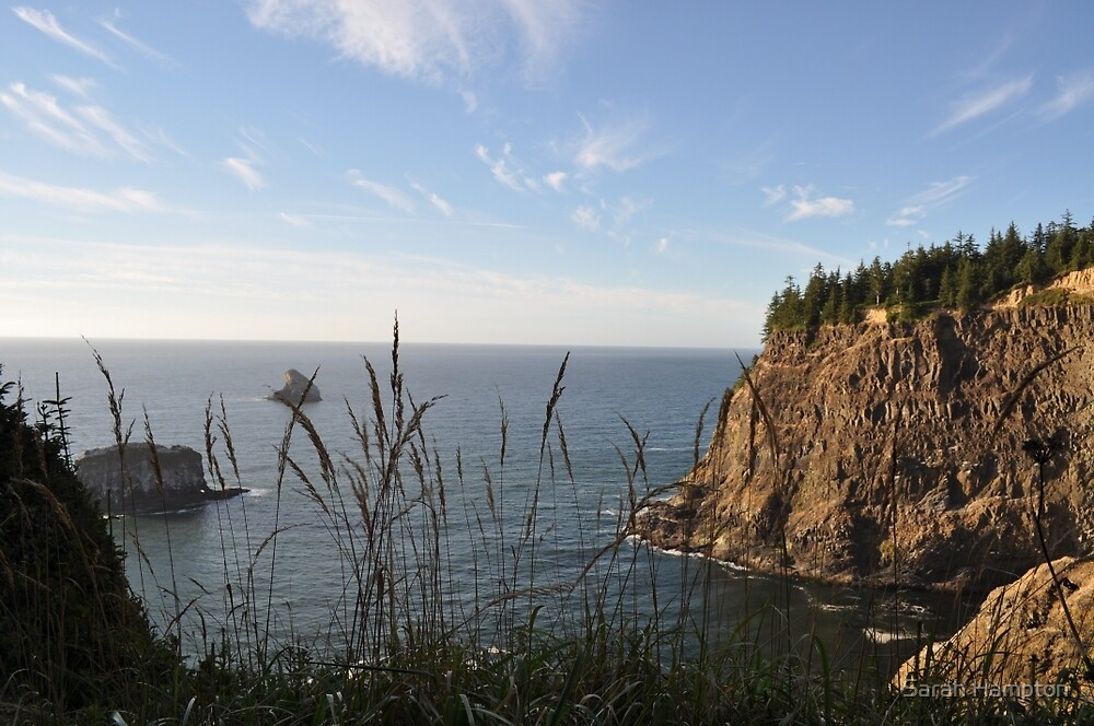 Oregon Coast - View over the Cliff by Sarah Hampton
