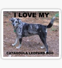 catahoula leopard dog blue merle love with picture Sticker