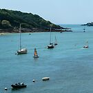 Salcombe Harbour, Salcombe, England by fotosic