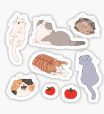 scottish folds (and some tomatoes!) Sticker
