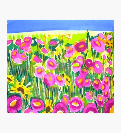 Poppy Field Photographic Print