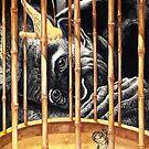 """Cage"" by Sergei Rukavishnikov by Alenka Co"
