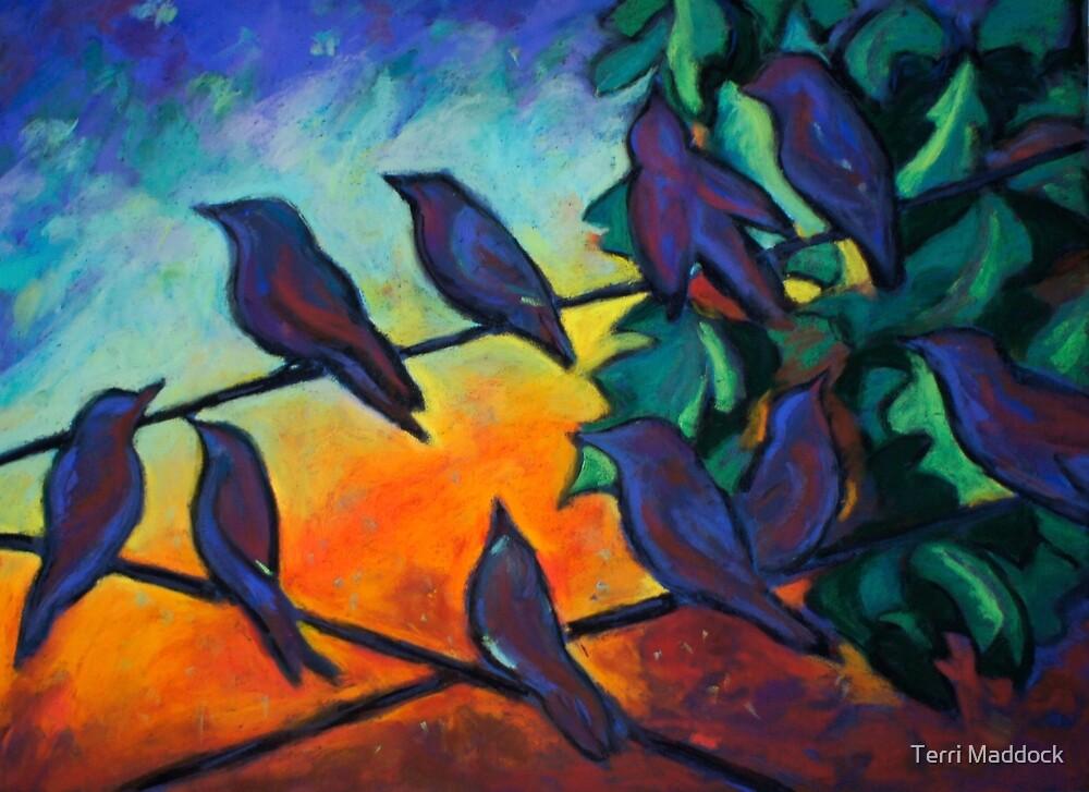Night Vision by Terri Maddock