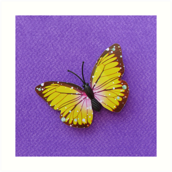 Yellow Butterfly by Mark Lang