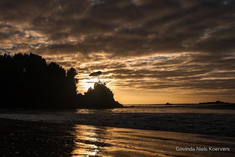 Stewart Island by Govinda Niels Koervers