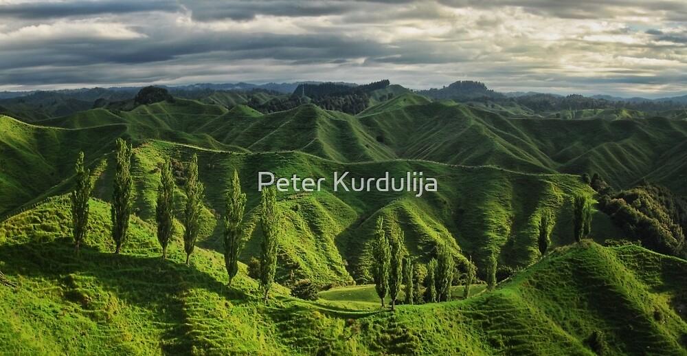 Crumpled Taranaki  by Peter Kurdulija