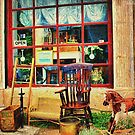 The Olde Antique Shop by wallarooimages