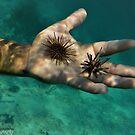Under the Sea by John  Kapusta
