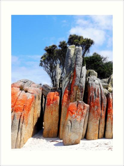 Vertical Rocks - Bay of Fires Tasmania by Lexa Harpell