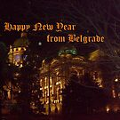All the best in New Year! by Ana Belaj