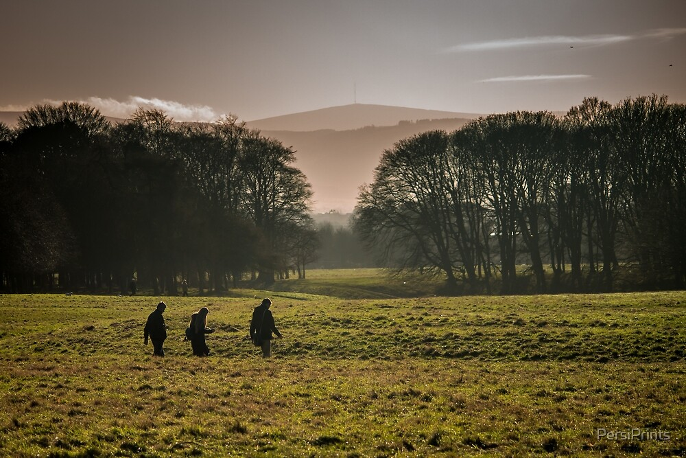 Early Winter in Phoenix Park by PersiPrints