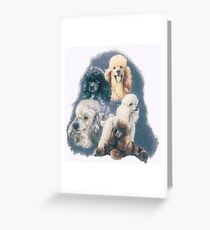 Poodle w/Ghost Image Greeting Card