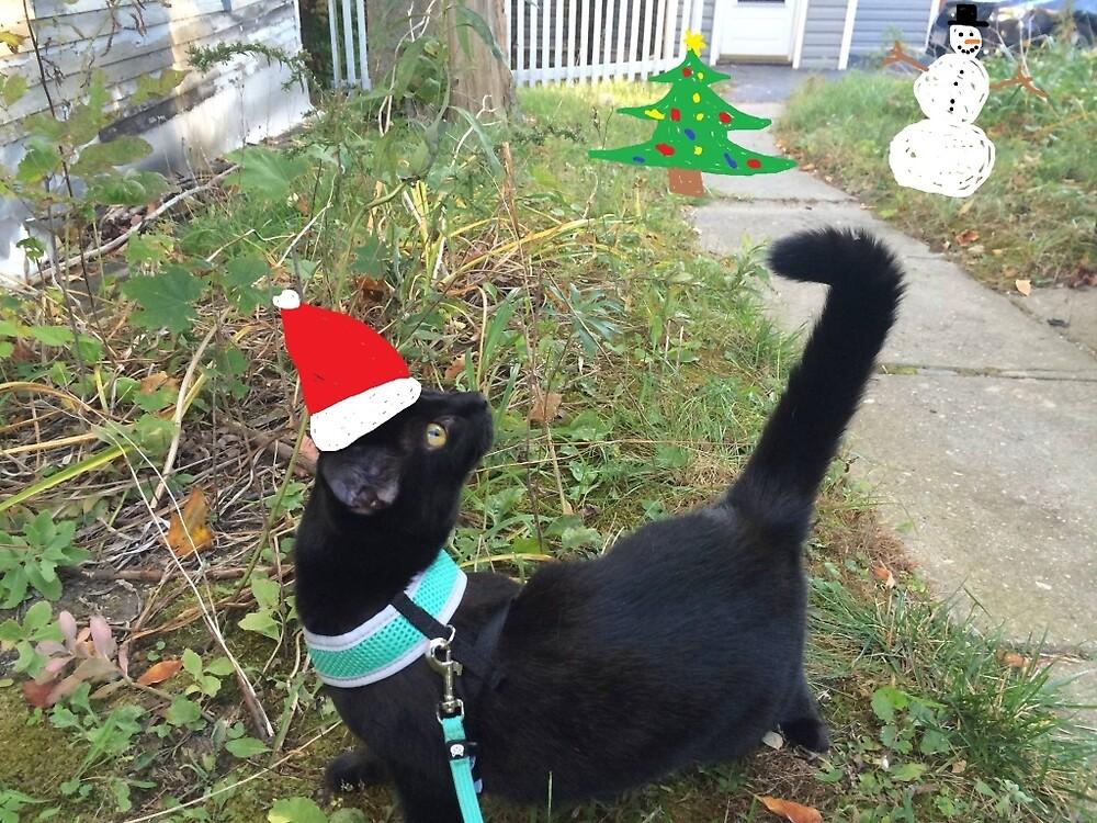 Christmas Time Rosette  by RosetteCat