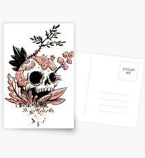 Skull Growth Postcards