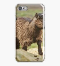 Pygmy Goat iPhone Case/Skin