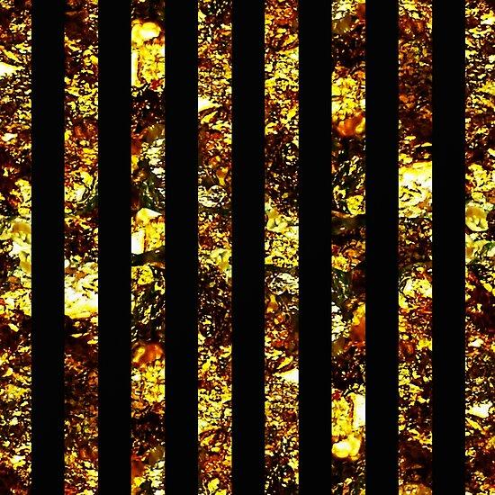 Golden Bars by Printpix