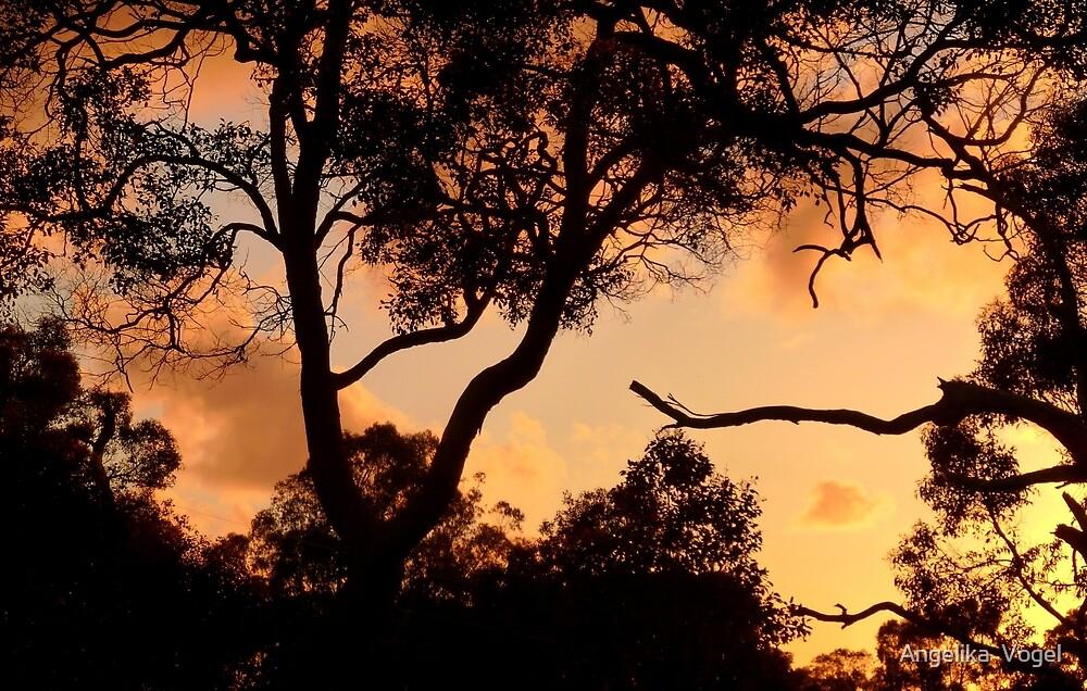 Sunset in Cowaramup... by Angelika  Vogel
