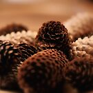 The Pine Cones by Jeremy Lavender Photography