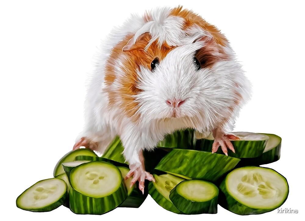 Guinea pig on cucumbers by kirikina