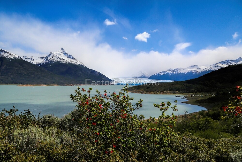 Argentino Lake by FactorFourPhoto