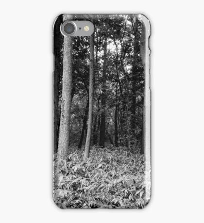 Hallasan National Park (한라산국립공원) iPhone Case/Skin