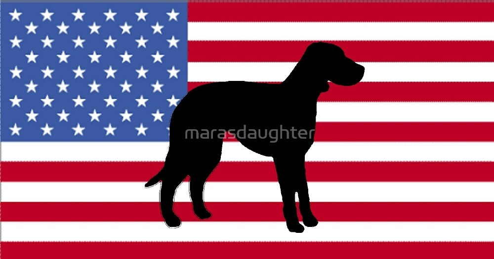 CLD silhouette on flag by marasdaughter