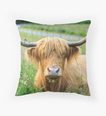 Highland Cattle, Scotland Throw Pillow