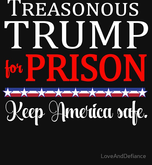 Treasonous Trump for Prison by LoveAndDefiance