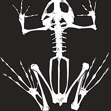 Frog Skeleton by klarapie