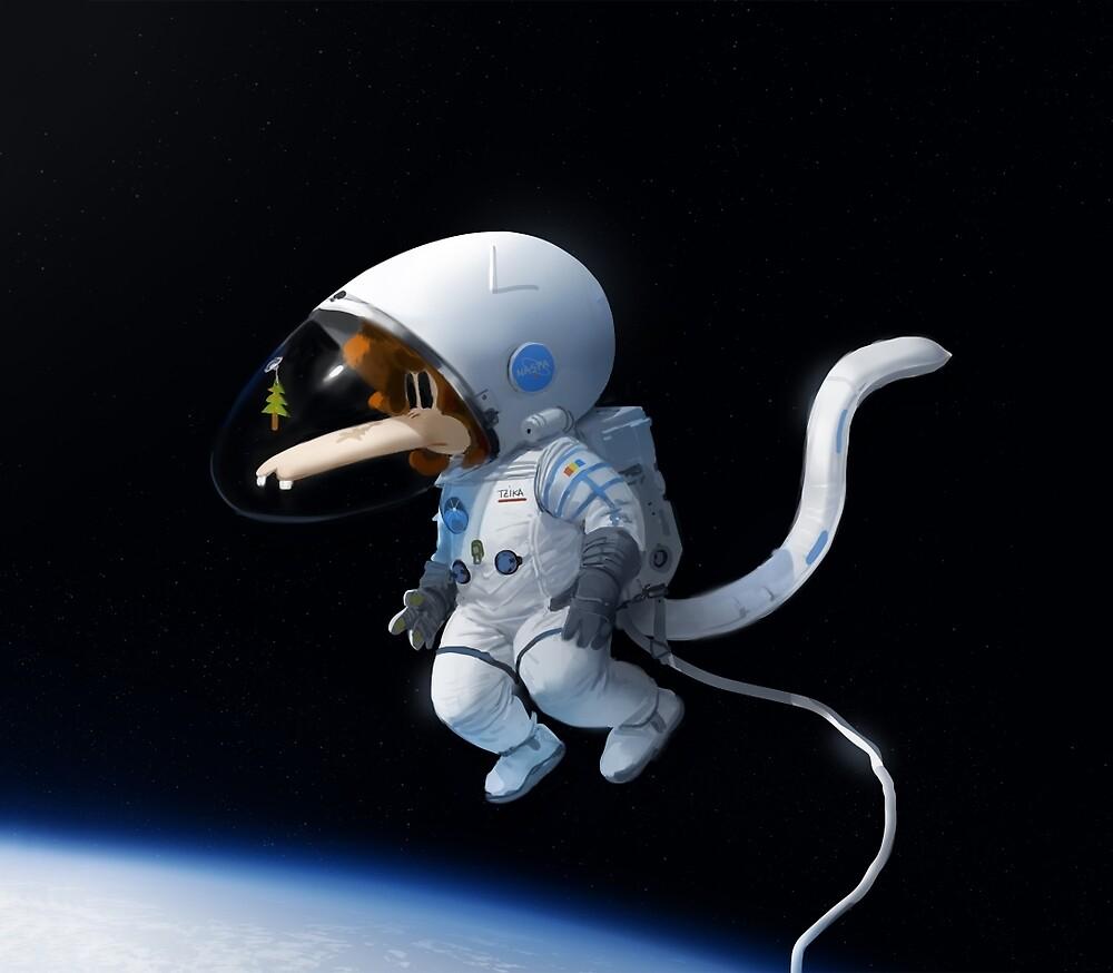 Tzika Space by tzika