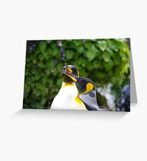 A pair of King Penguins Greeting Card