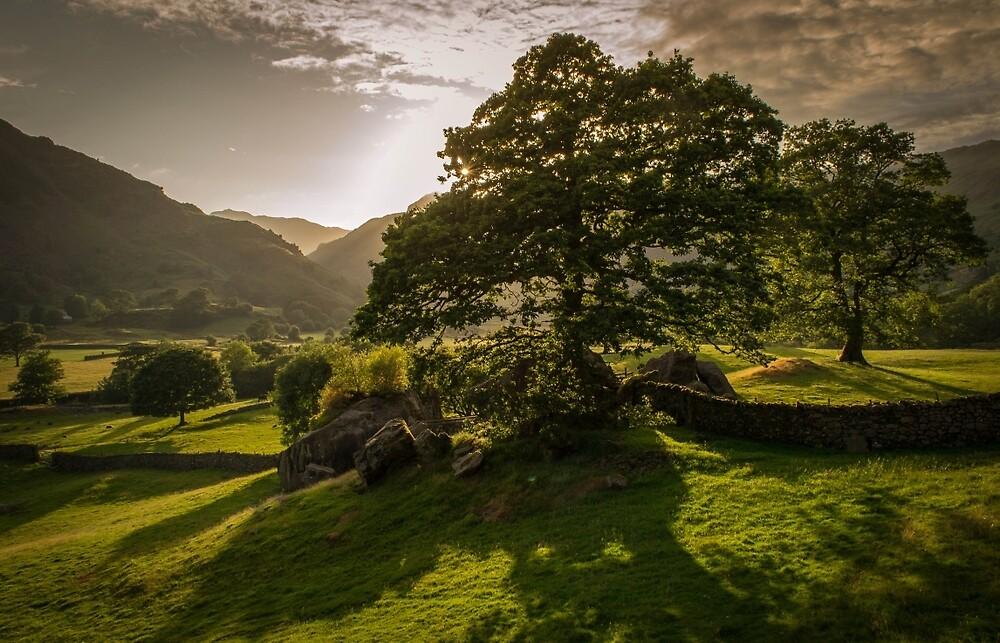 Irerland Landscape by Rubble7