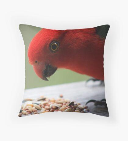 Australian King Parrot Throw Pillow