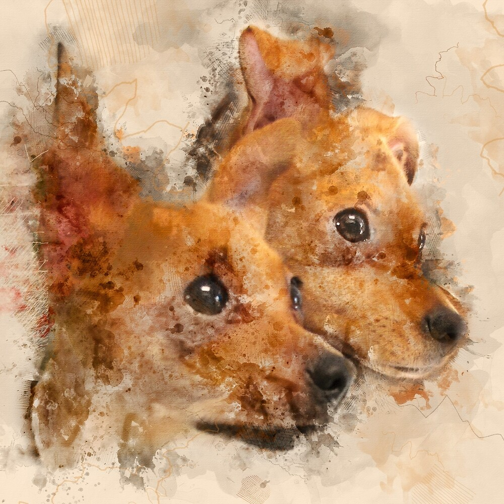 Tangled Twins - Chihuahua Puppy Watercolor by Rayanda Arts