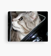 Let the cat out of the bag not an easy task Canvas Print