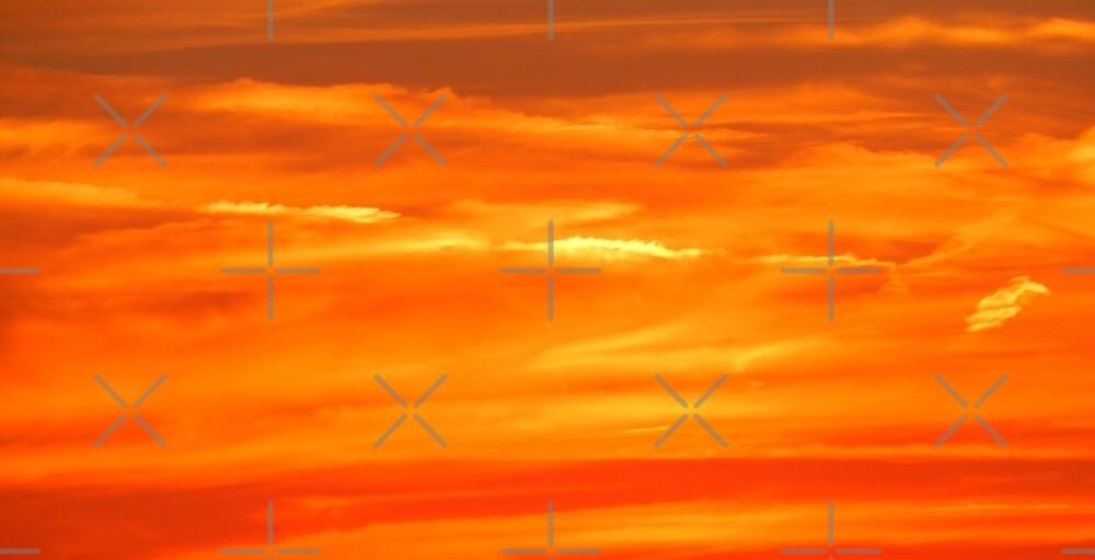 Sun Fire by TrapperWeasel
