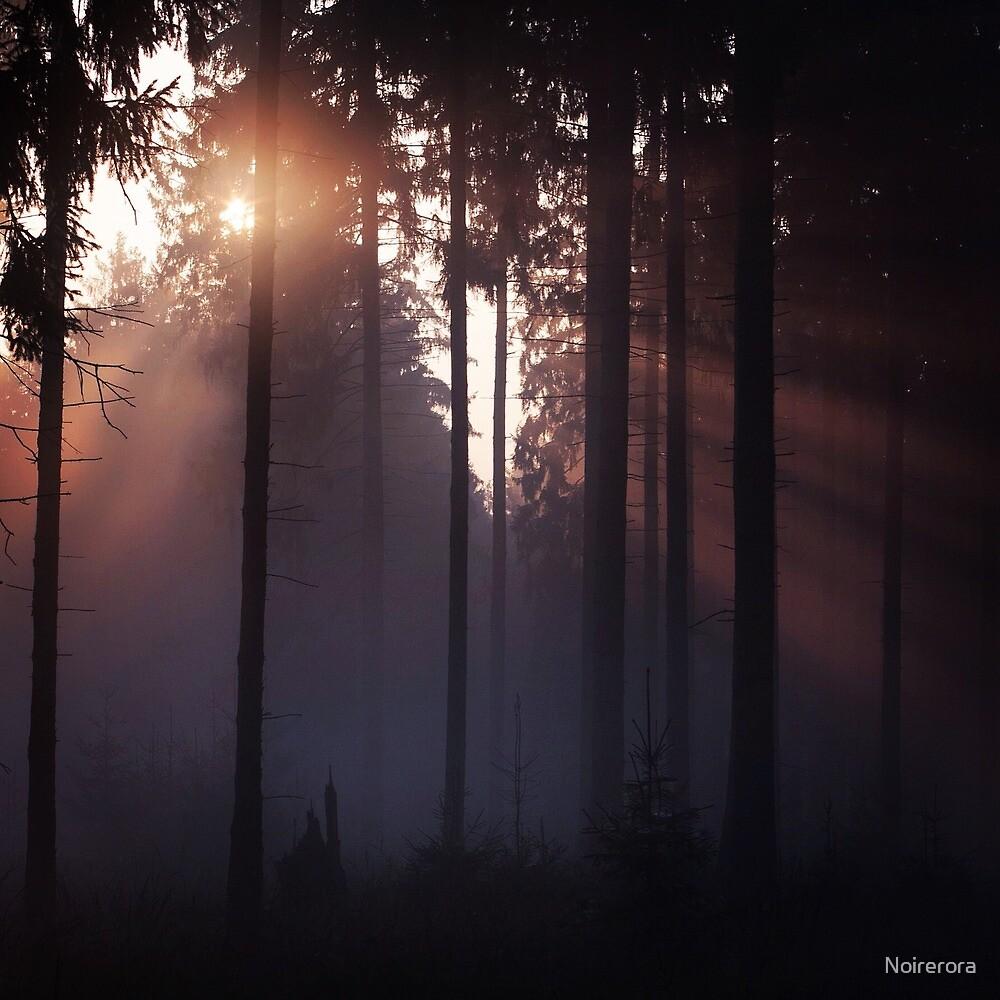 awakening forest by Noirerora
