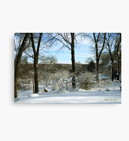 A Walk ~ On a Winter's Day Canvas Print