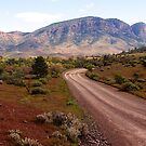 Through the Flinders Ranges towards Sacred Canyon. South Australia. by johnrf