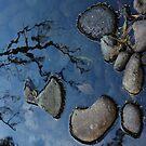 Rocks by Digby