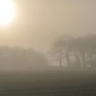 """ Sun, Mist And Trees "" by Richard Couchman"